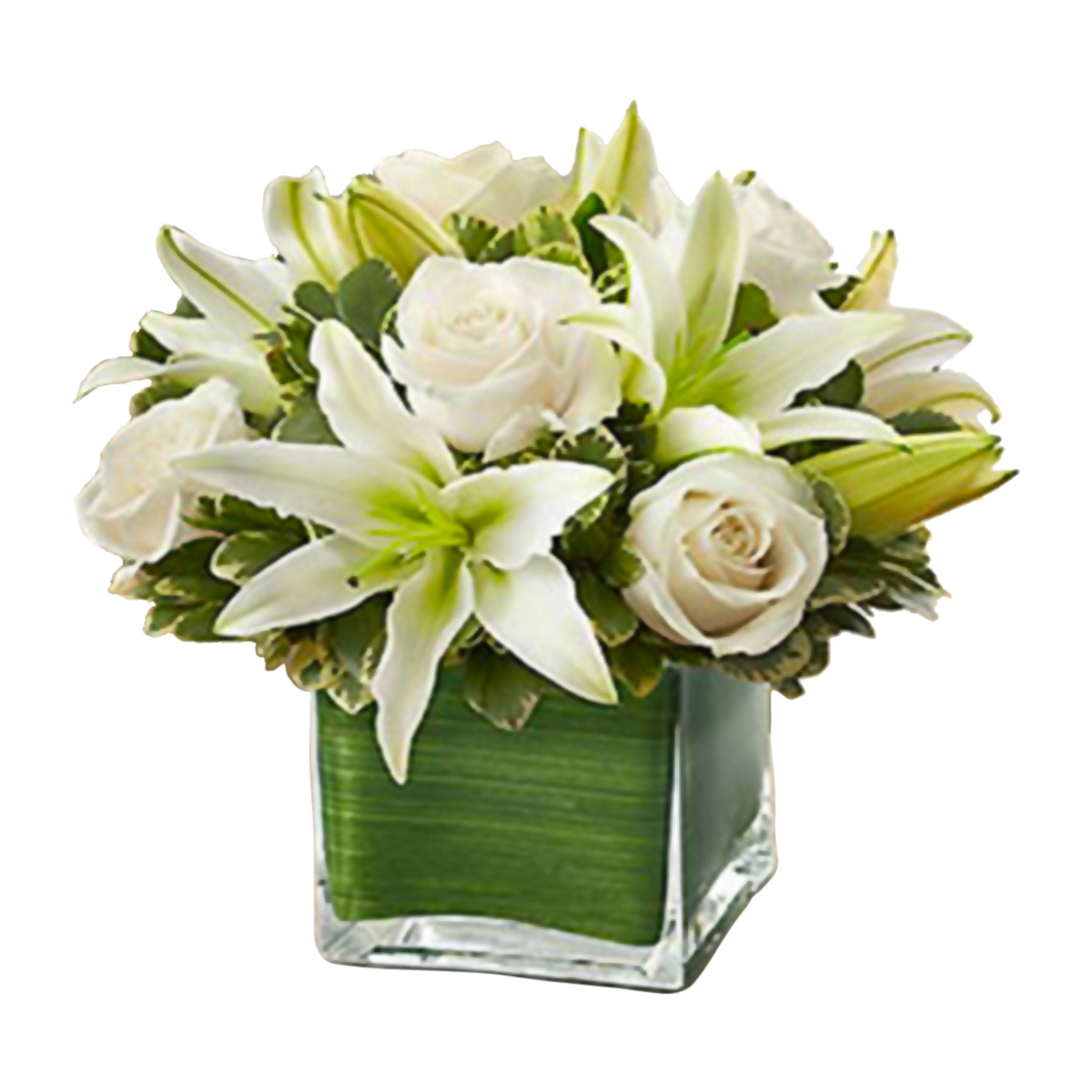 Voted best florist and flower shop in las vegas by readers of las modern roses lilies cube white izmirmasajfo