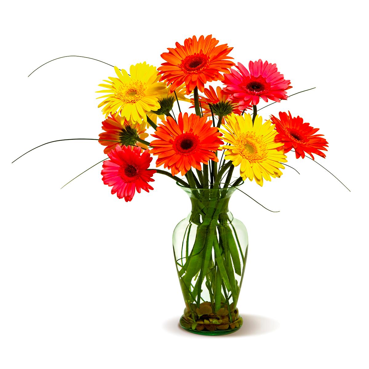 Voted best florist and flower shop in las vegas by readers of las happy gerberas izmirmasajfo