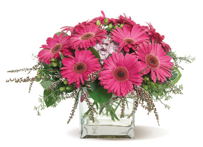 Hot pink gerbera daisies hot pink flower arrangements gerbera glory mightylinksfo